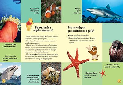 1: Морските обитатели