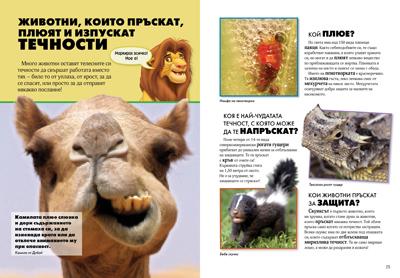Удивителният свят на животните