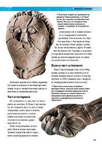 Древните келти