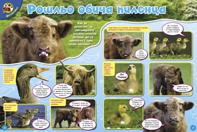 Списание ВЕСЕЛ ЗООПАРК
